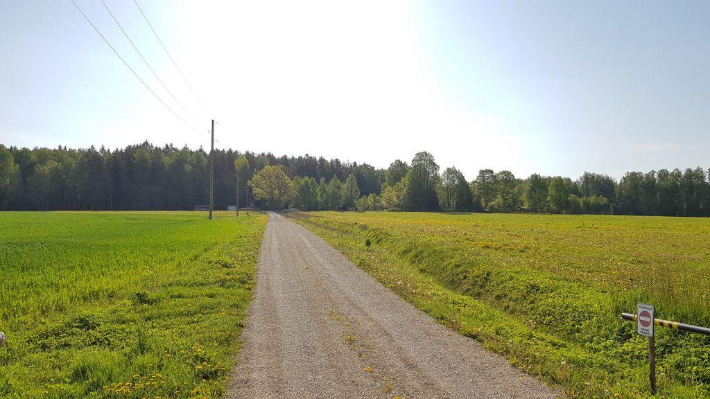 Ceļš, kas no šosejas ved uz Lūšu Dravu! Mums ir arī stāvvieta lielajam autobusam